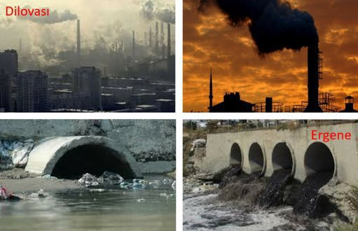 pollution article in english