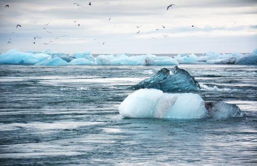 Buz kütleleri Alaska'dan 240 kilometre uzaklaştı